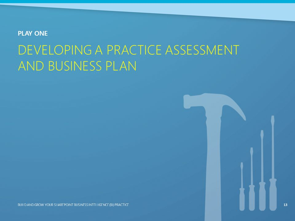 Developing a Practice Assessment and Business Plan