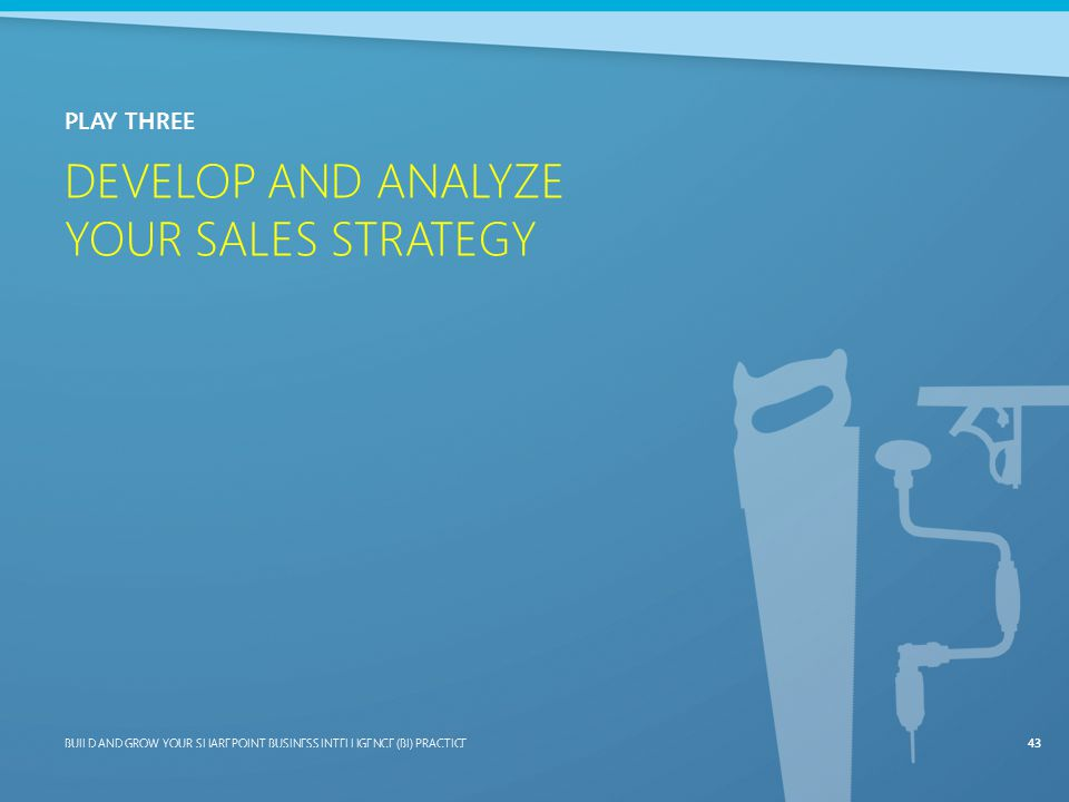 Develop and Analyze Your Sales Strategy