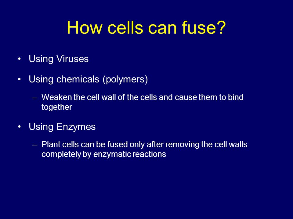 How cells can fuse Using Viruses Using chemicals (polymers)