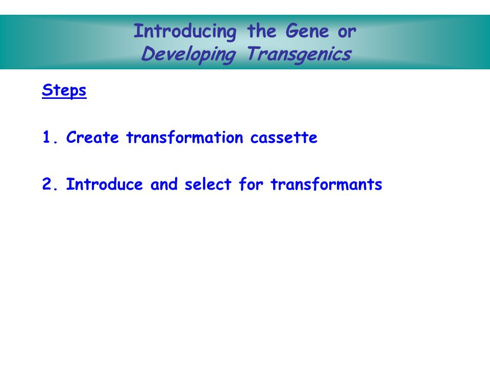 Introducing the Gene or Developing Transgenics