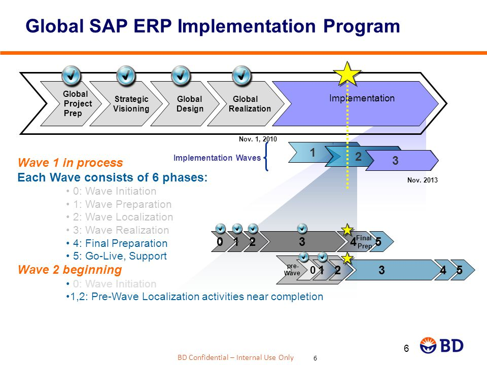 Global SAP ERP Implementation Program
