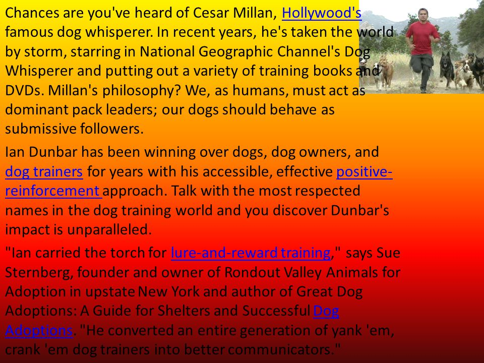 Chances are you ve heard of Cesar Millan, Hollywood s famous dog whisperer. In recent years, he s taken the world by storm, starring in National Geographic Channel s Dog Whisperer and putting out a variety of training books and DVDs. Millan s philosophy We, as humans, must act as dominant pack leaders; our dogs should behave as submissive followers.