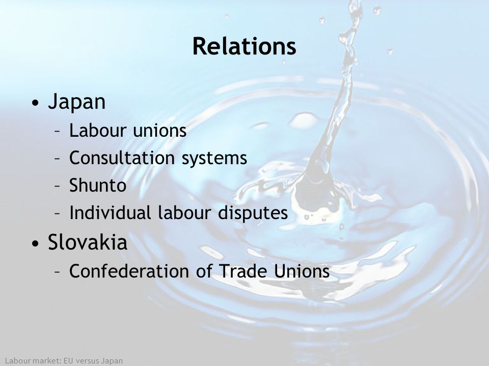 Relations Japan Slovakia Labour unions Consultation systems Shunto