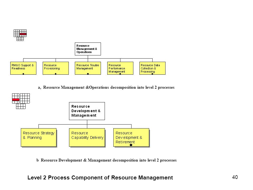 Level 2 Process Component of Resource Management