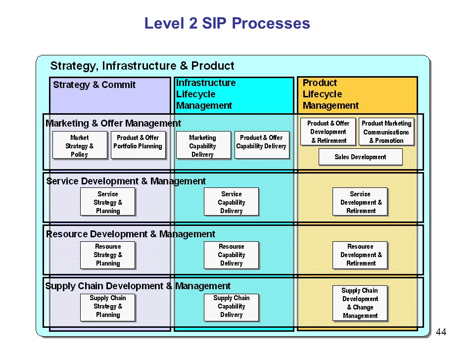 Level 2 SIP Processes