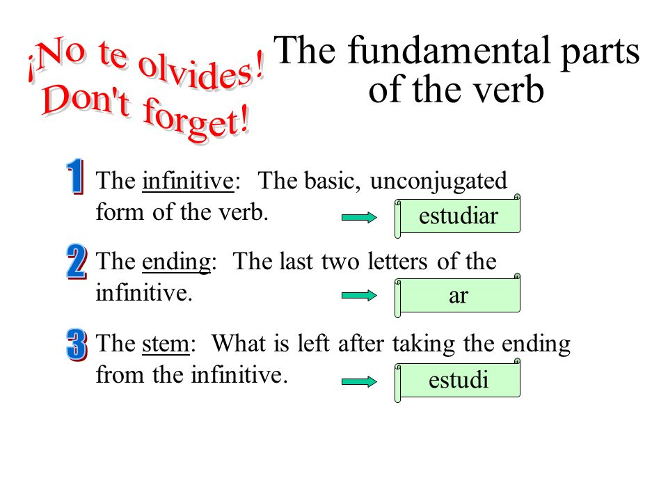Verbs in the Present Tense - ppt download
