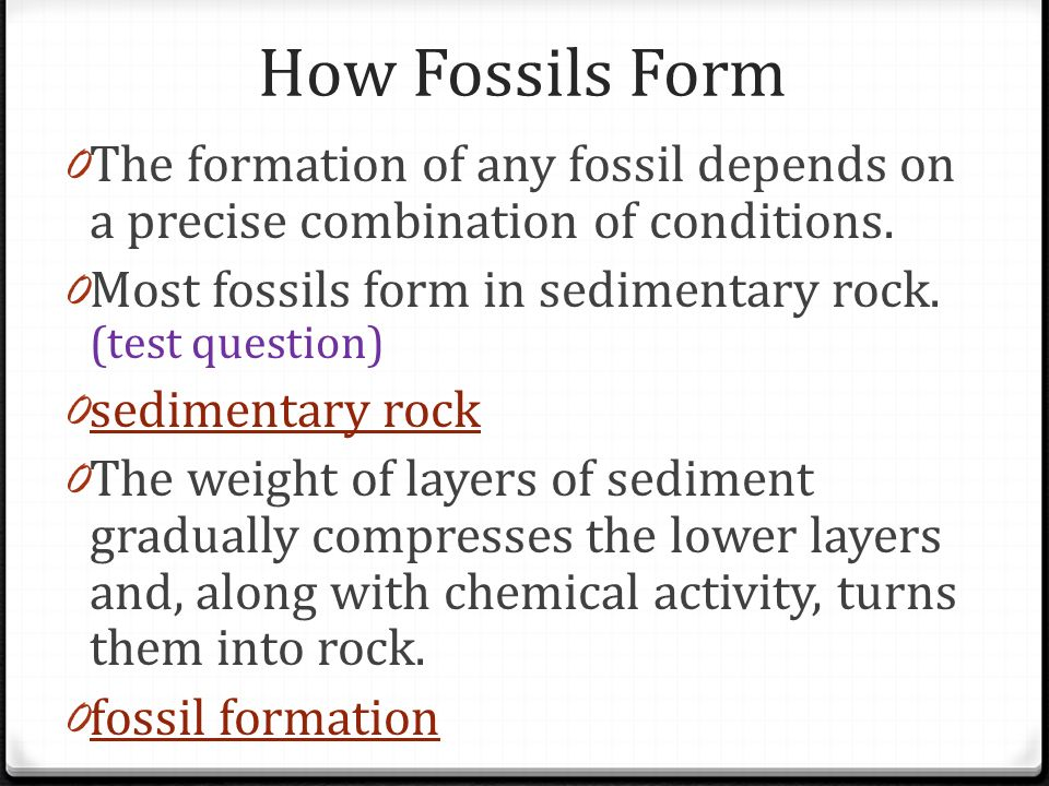 How Fossils Form The formation of any fossil depends on a precise combination of conditions. Most fossils form in sedimentary rock. (test question)