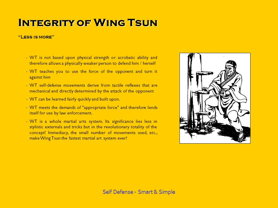 Integrity of Wing Tsun Less is more