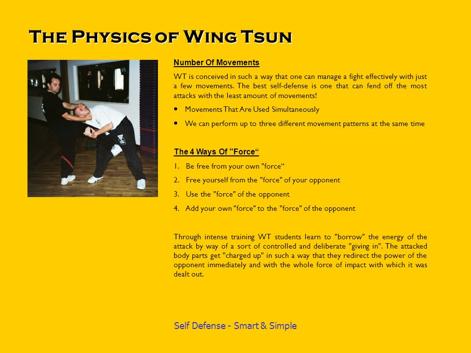 The Physics of Wing Tsun