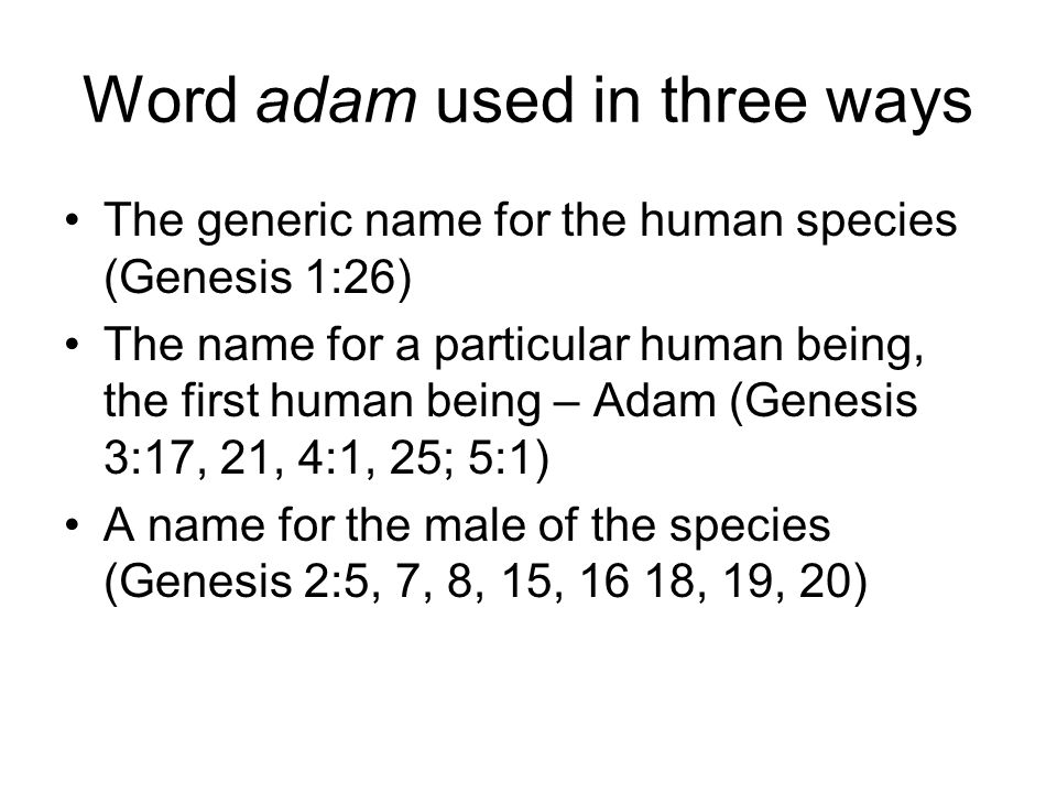 Word adam used in three ways