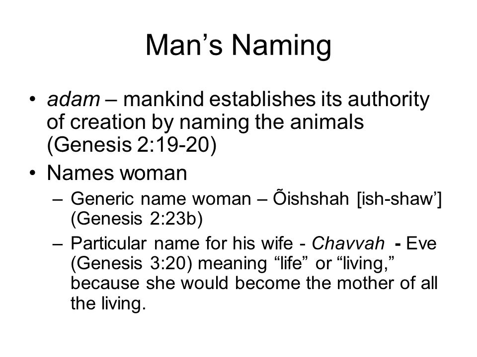 Man's Naming adam – mankind establishes its authority of creation by naming the animals (Genesis 2:19-20)
