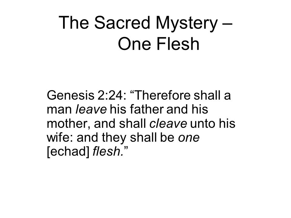 The Sacred Mystery – One Flesh