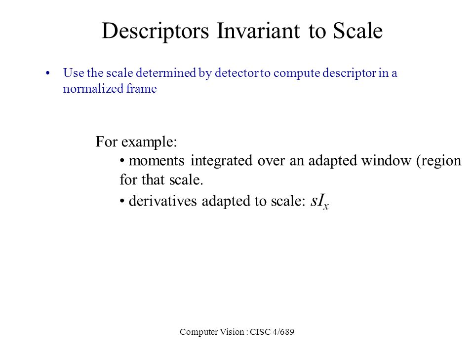 Descriptors Invariant to Scale