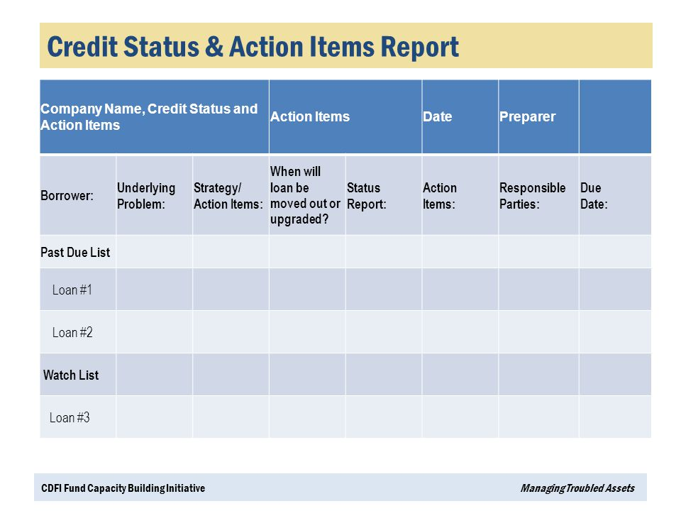 Credit Status & Action Items Report