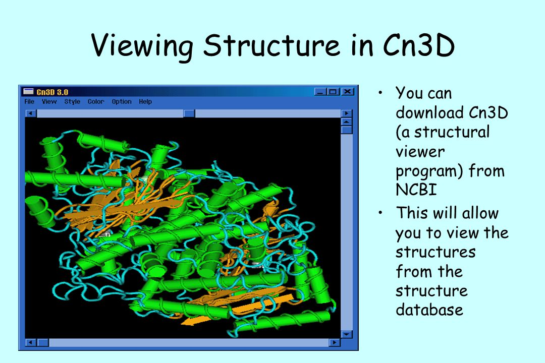Viewing Structure in Cn3D