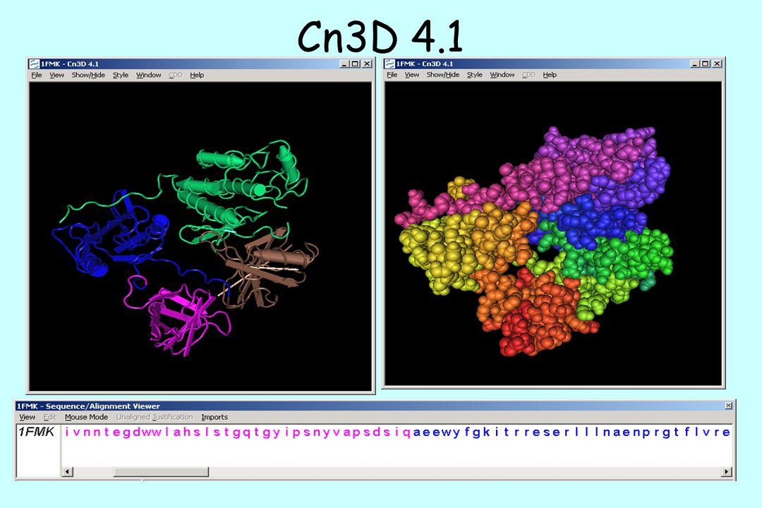 Cn3D 4.1 You can view the structure in the database in several different formats.