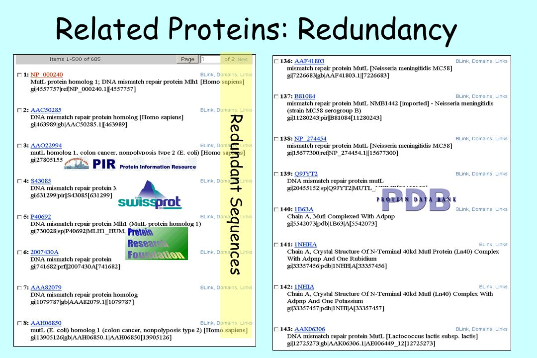 Related Proteins: Redundancy