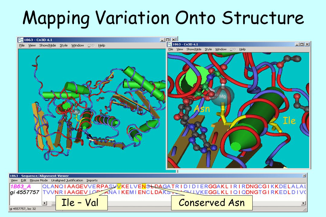 Mapping Variation Onto Structure
