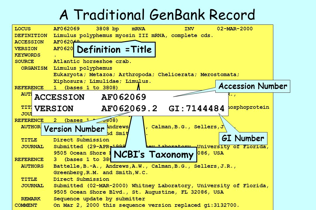 A Traditional GenBank Record