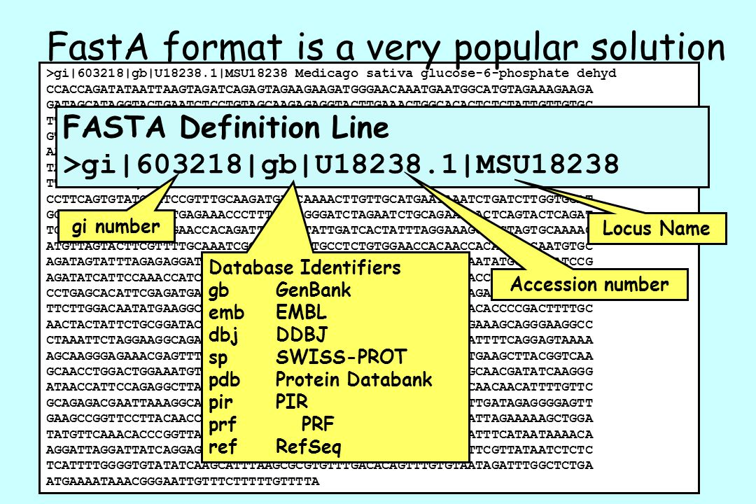 FastA format is a very popular solution
