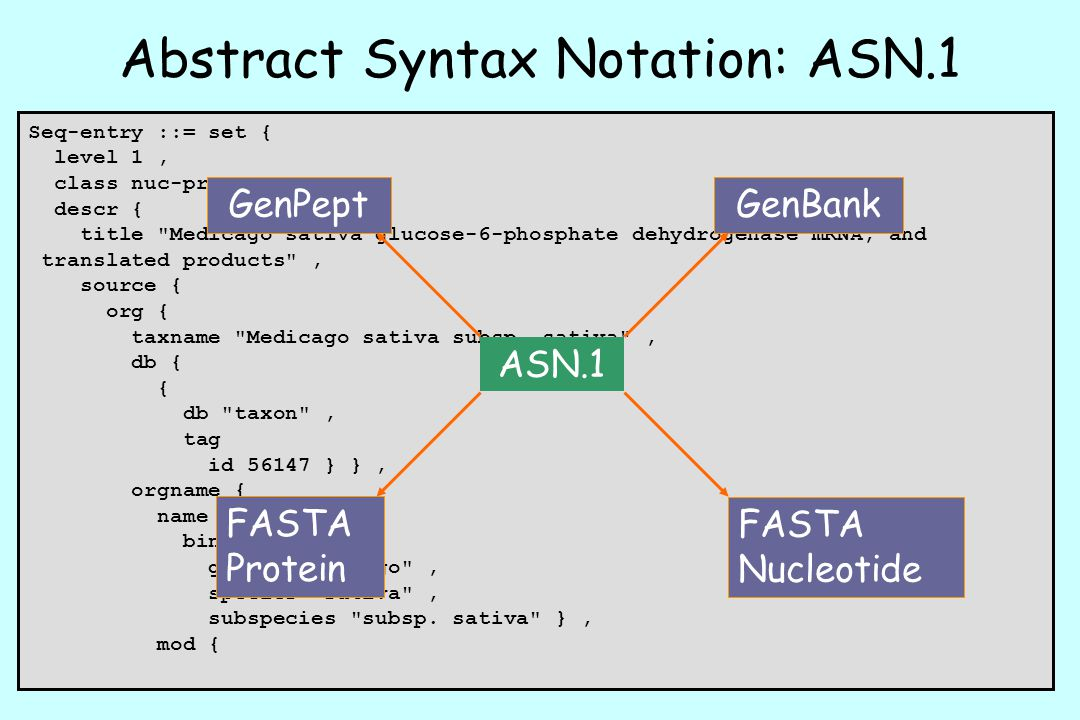Abstract Syntax Notation: ASN.1