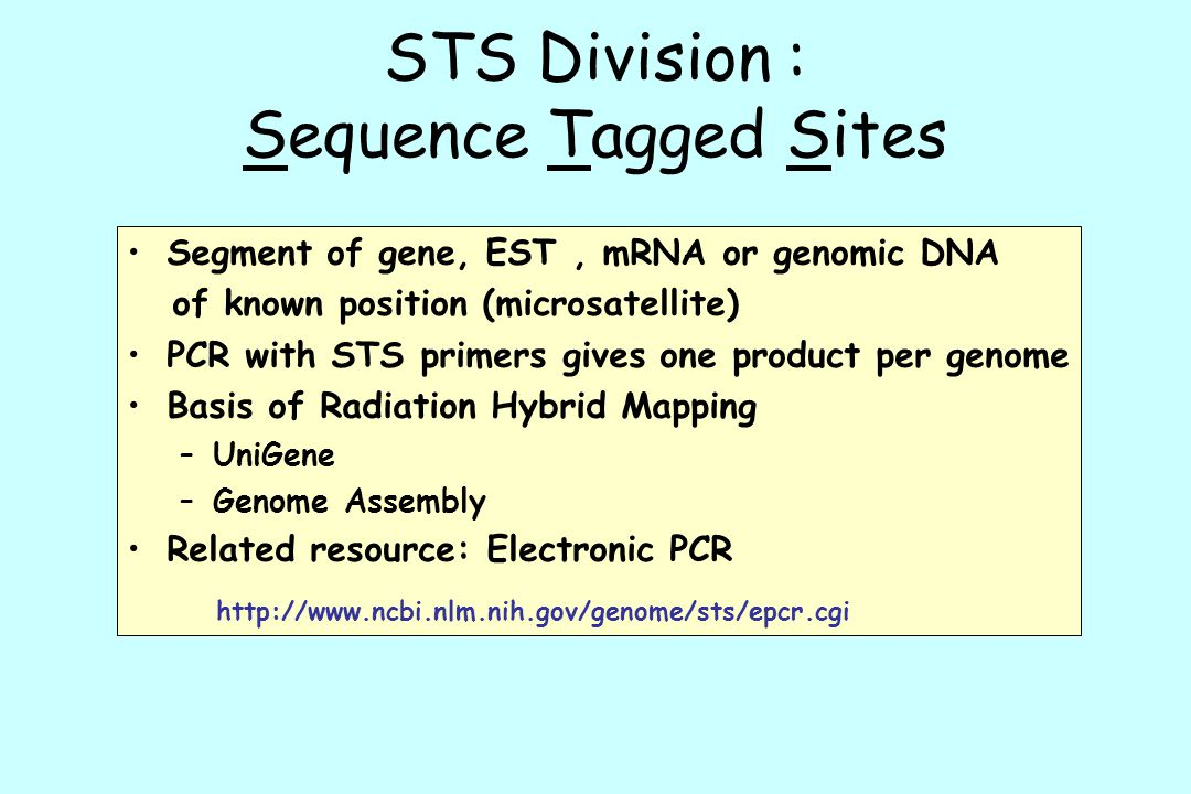 STS Division : Sequence Tagged Sites