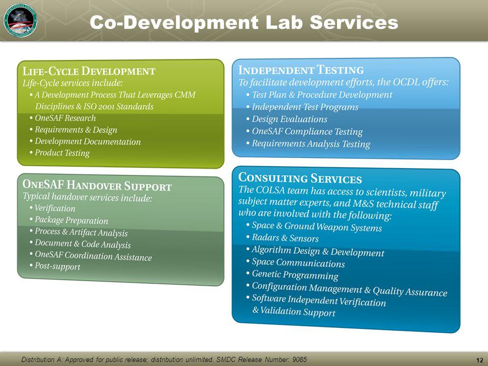 Co-Development Lab Services