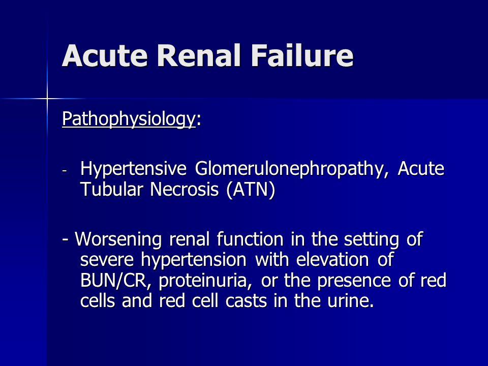 Acute Renal Failure Pathophysiology: