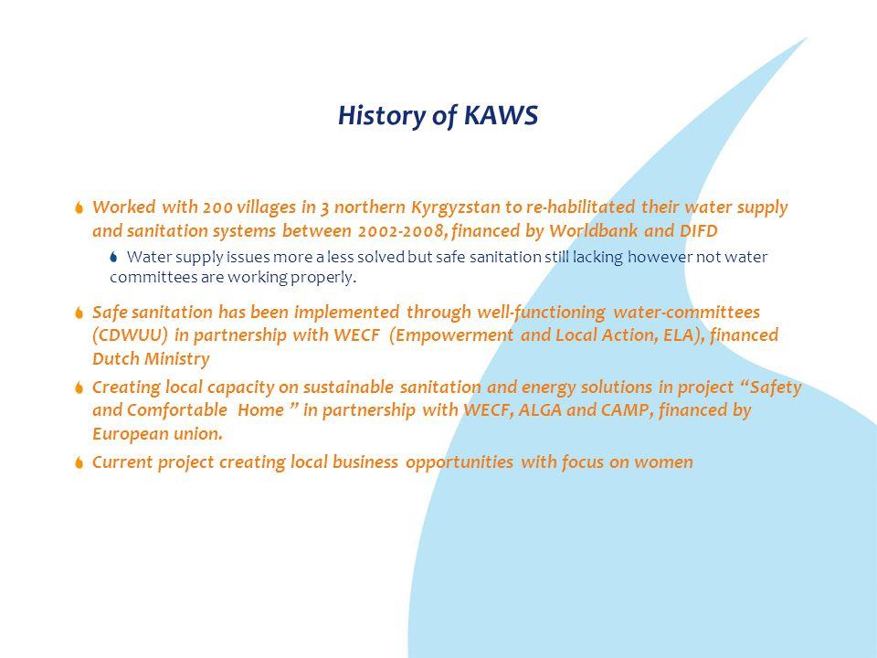 History of KAWS