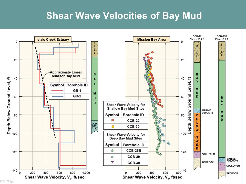 Shear Wave Velocities of Bay Mud