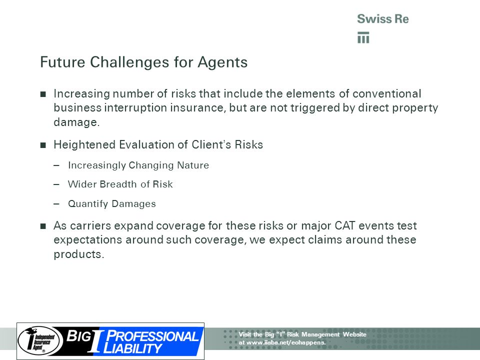 Future Challenges for Agents