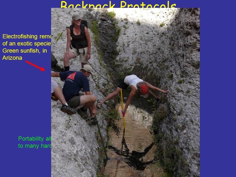 Backpack Protocols Electrofishing removal of an exotic species,
