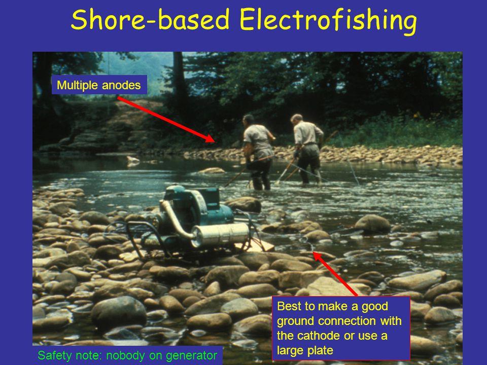 Shore-based Electrofishing