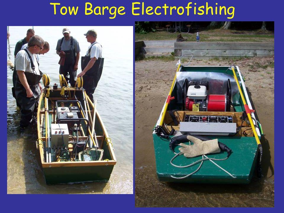 Tow Barge Electrofishing
