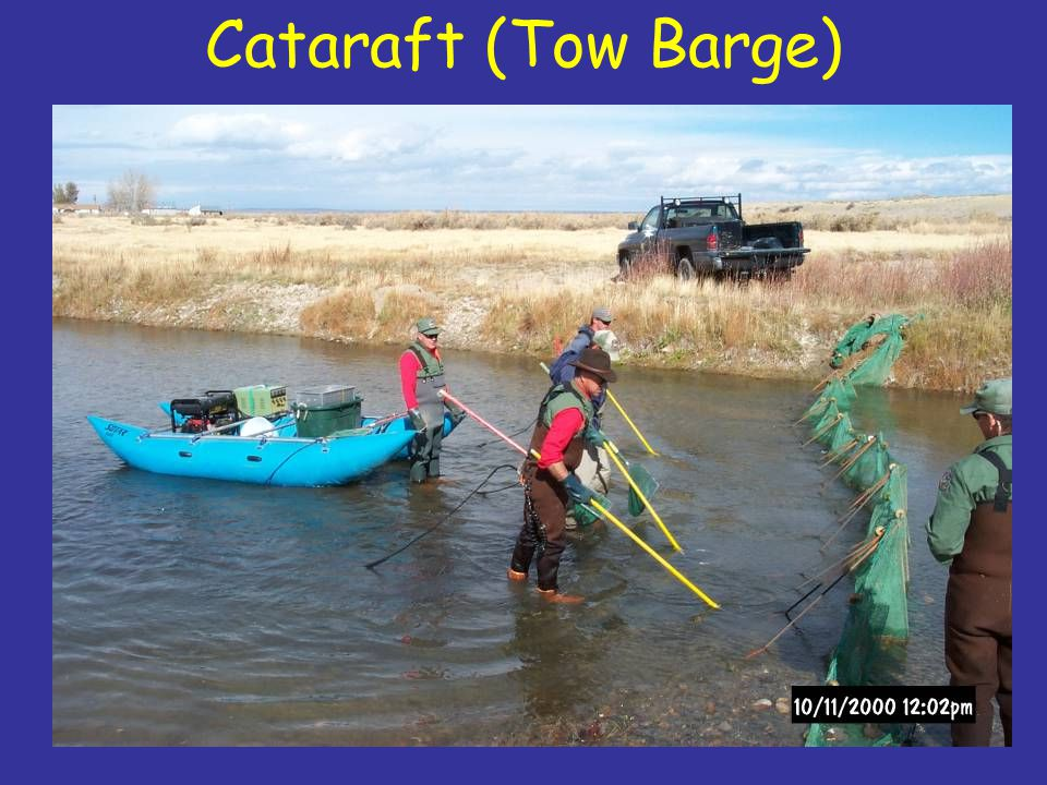 Cataraft (Tow Barge)
