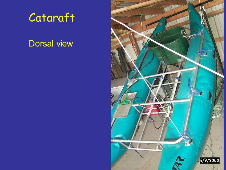 Cataraft Dorsal view