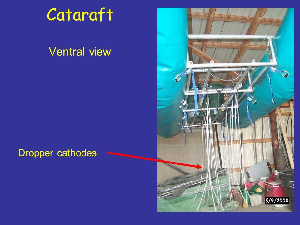 Cataraft Ventral view Dropper cathodes