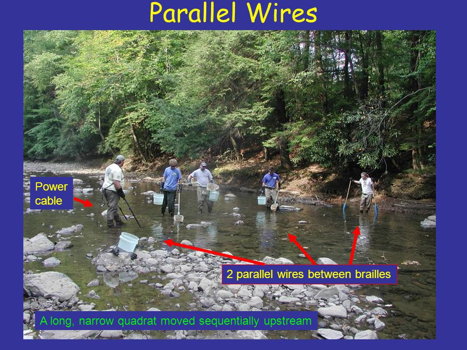 Parallel Wires Power cable 2 parallel wires between brailles