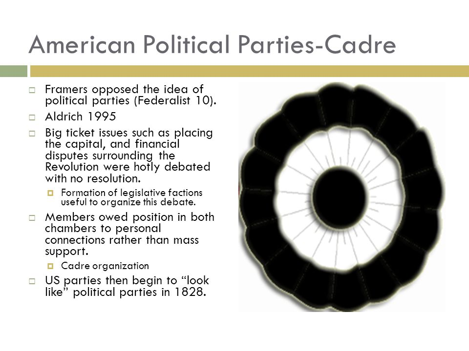 American Political Parties-Cadre