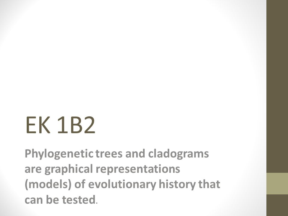 EK 1B2 Phylogenetic trees and cladograms are graphical representations (models) of evolutionary history that can be tested.