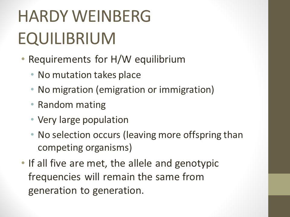 HARDY WEINBERG EQUILIBRIUM