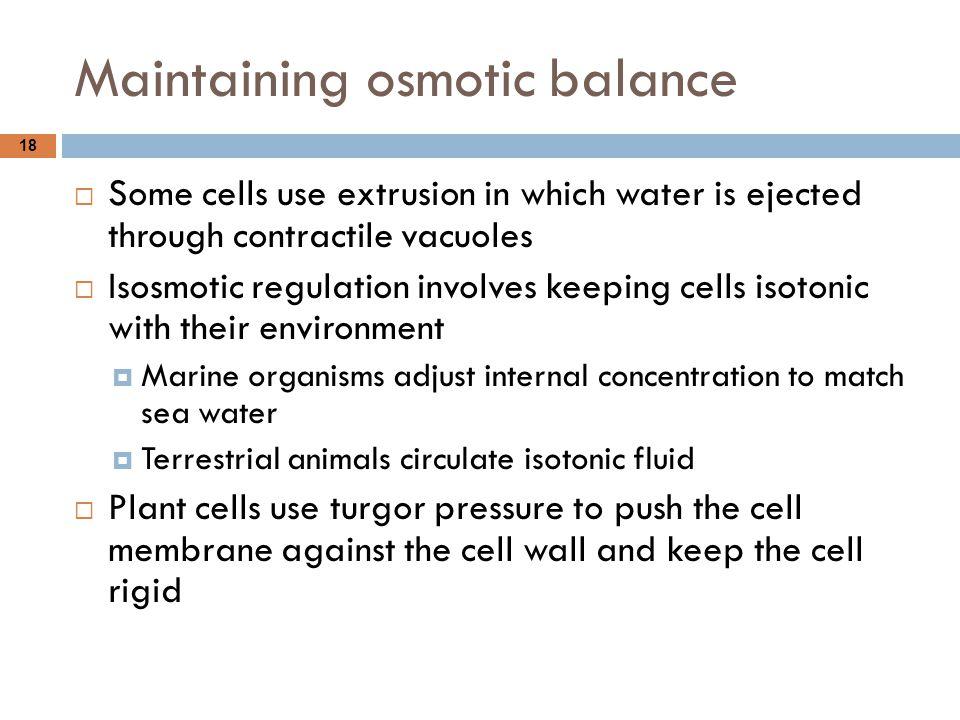 Maintaining osmotic balance