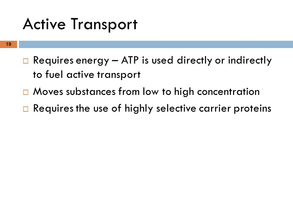Active Transport Requires energy – ATP is used directly or indirectly to fuel active transport. Moves substances from low to high concentration.