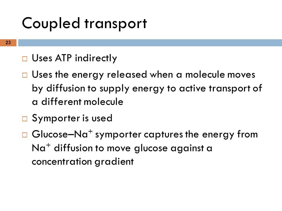 Coupled transport Uses ATP indirectly