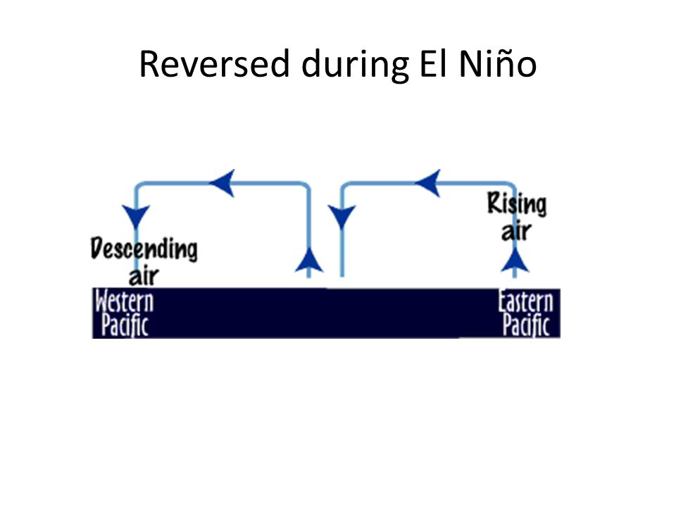 Reversed during El Niño