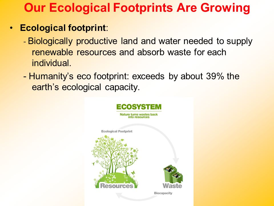Our Ecological Footprints Are Growing