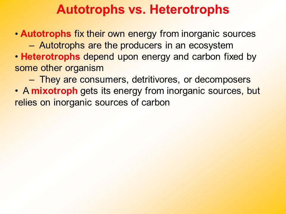 Autotrophs vs. Heterotrophs