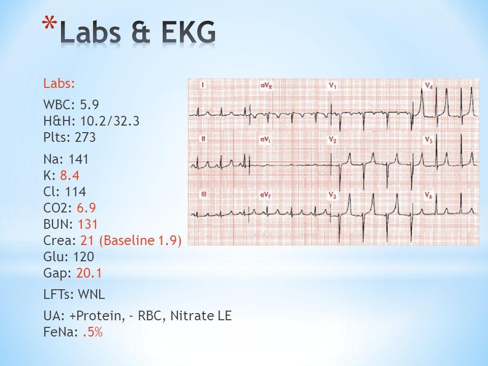 Labs & EKG