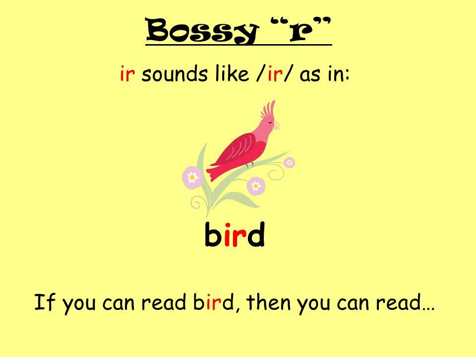 bird Bossy r ir sounds like /ir/ as in: