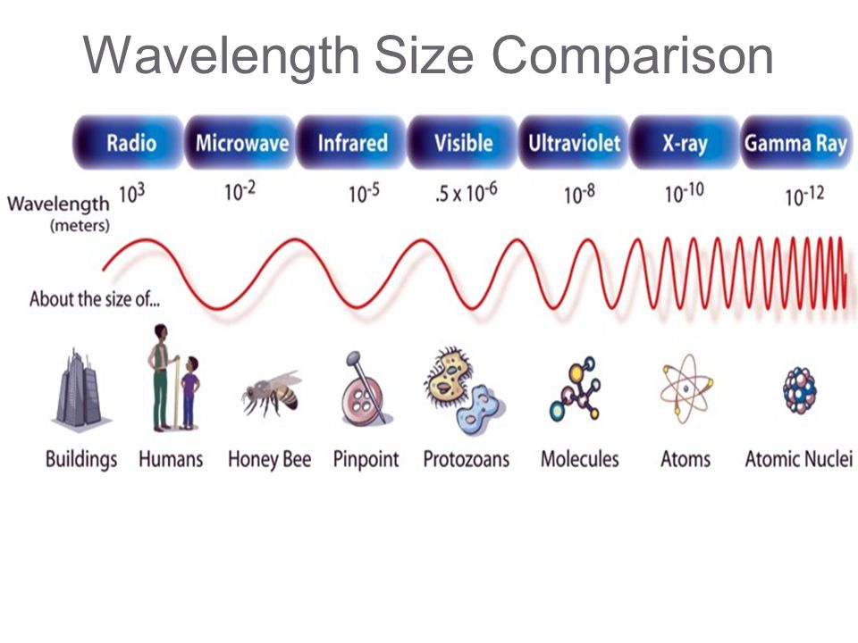 Wavelength Size Comparison